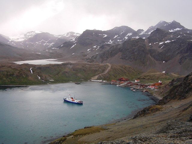 High above the Grytviken whaling station.